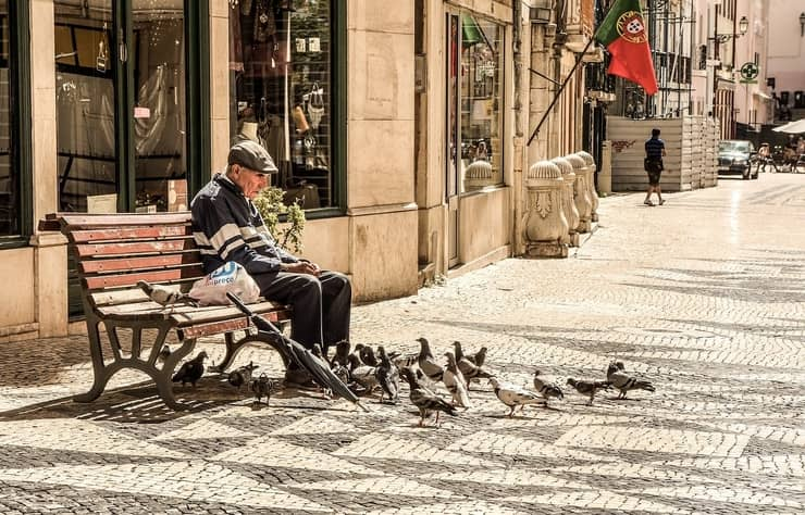 old man feeding birds