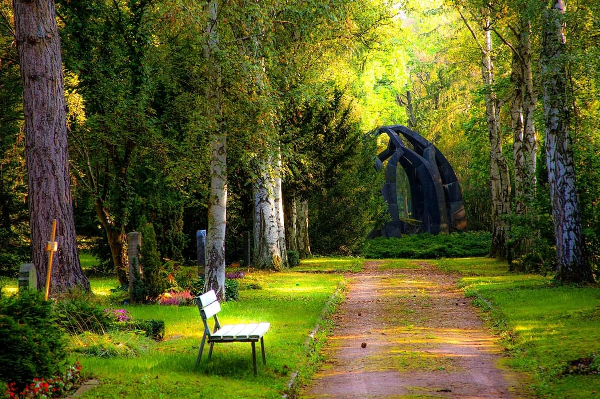 Cemetery in a forest with various gravestones