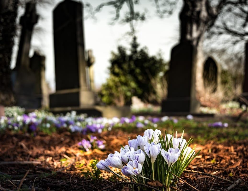 graveyard with flowers focused