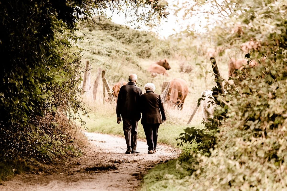 old couple walking in forest