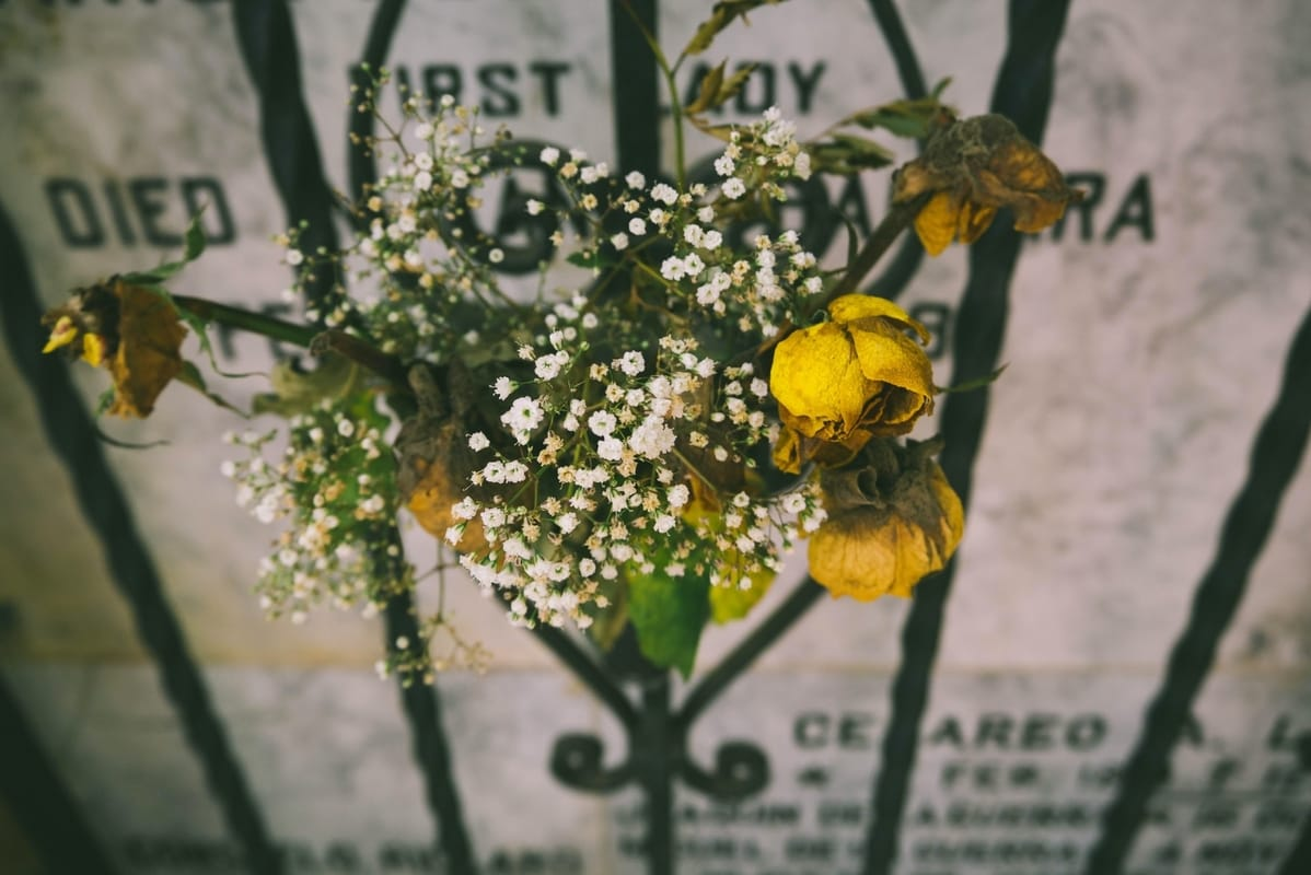 yellow roses hanging before a gravestone
