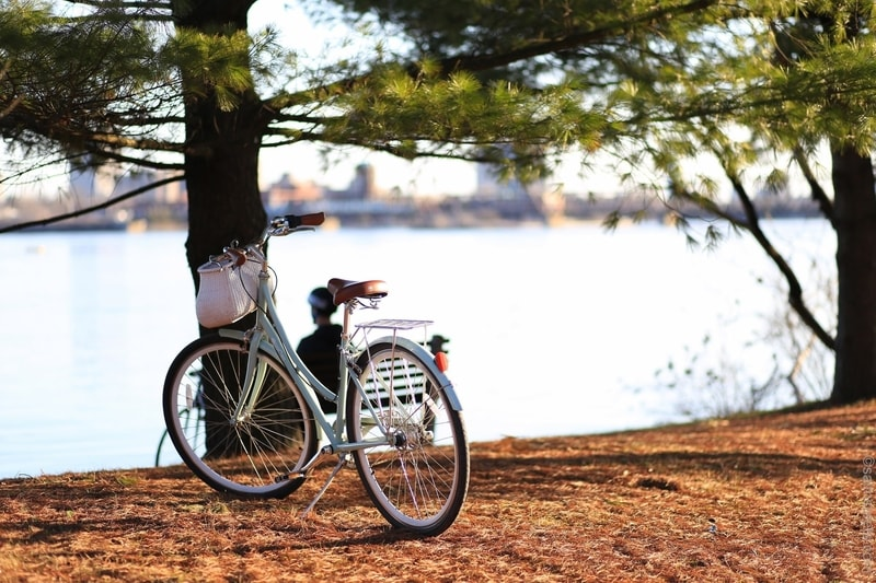 A blue bicycle with basket parked by the lakeside with view of the lake and city skyline